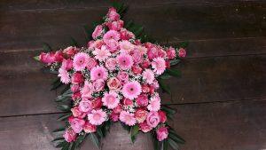 Blumenstern